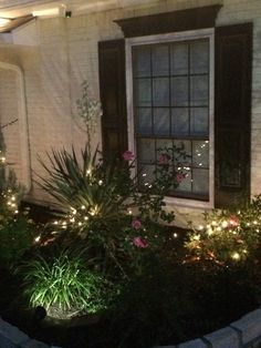 A couple more sets of lights needs to be put outside the guest room.