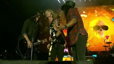 Pro Shot, Rock Videos, Paradise City, Stadium Tour, Video Site, Dave Grohl, Neil Young, Guns N Roses, Foo Fighters