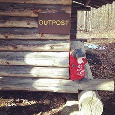 Harvey enjoyed the sun on a trek up to Outpost this afternoon! #lentoutside #skylake14
