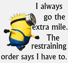 (6) Minion Rules - Timeline Photos