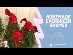 How to Make an Evergreen Gnome Using a Tomato Cage - YouTube Tomato Cages, Gnomes, Evergreen, Christmas Ornaments, Christmas Trees, Create Your Own, Whimsical, Homemade, Holiday Decor