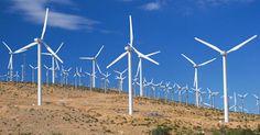 Energia eólica pode se tornar segunda matriz energética do país | ARACATIAÇU EM AÇÃO