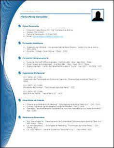 Plantilla de Currículum VII | Trabajopolis.bo