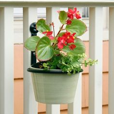 Amazon.com: Achla Designs Flowerpot Ring Wall Bracket, 6-inch (SFR-06): Patio, Lawn & Garden