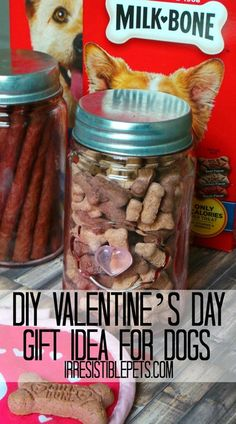 DIY Valentine's Day Gift Idea for Dogs  by IrresistiblePets.com #treatthepups #ad #cbias