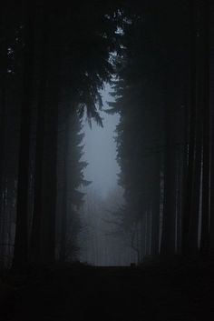 """""""These woods are lovely, dark and deep ~ But I have promises to keep ~ And miles to go before I sleep ~ And miles to go before I sleep"""" - Robert Frost, """"Stopping By Woods on a Snowy Evening"""" Spooky Pictures, Dark Pictures, Memes Arte, Before I Sleep, Fellowship Of The Ring, Dark Places, Dark Wood, Dark Art, Black Metal"""
