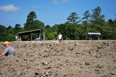 ARKANSAS - Crater of Diamonds State Park.The only diamond mine in the United States open to the public. Dig for gemstones Best Places To Camp, Places To See, Fairfield Bay Arkansas, Diamond Mines, Fossil Hunting, Tourist Trap, Famous Places, Travel Information