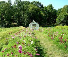 stockholm, rosendals trädgård