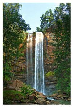 Toccoa Falls, Georgi