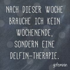 Saying of the day: The best sayings of - Spruch des Tages // Zitate -