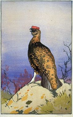 ✨ Allen William Seaby, British (1867-1953) - Red Grouse Calling, Colour Woodcut, Signed in graphite below image, titled and numbered 8, 19,3 x 12,1 cm