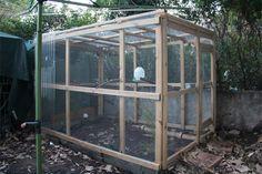 DIY Aviary Project