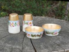 Antique Vignaud Limoges Open Salt Cellar Dips and Pepper Shakers, Hand Painted Wild Rose Design