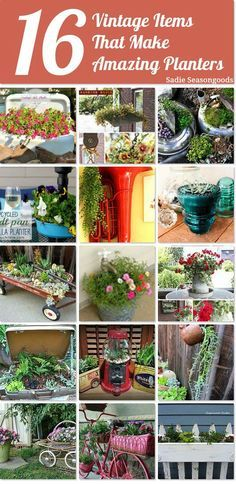 Buckets and tubas and Bundt pans- oh my! So many awesome upcycling ideas for different planters in this round-up, using vintage & antique treasures and thrifted/repurposed items. Definitely a fun project list and will add charm to your yard. #SadieSeasongoods