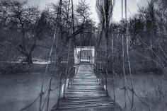 #photo #art #photographer #street #photography #streetphoto #water #bnw #blackandwhite #picture #monochrome #rosphoto #vsco #bridge #river #tree #bw #natgeo #nature #краснодар #чувствуй
