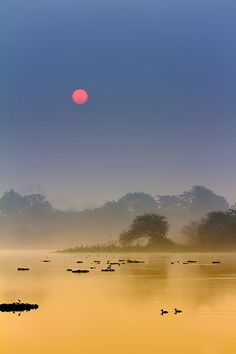 Winter morning - Pune, Maharashtra, India | ©Nitin Prabhudesai