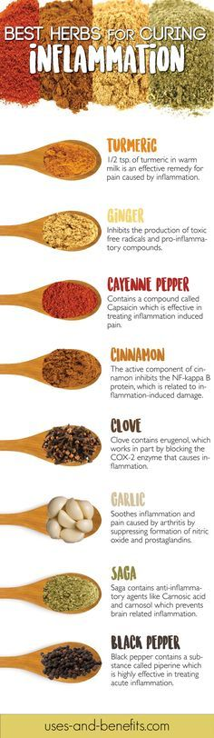 When the defense system of human body triggers the inflammatory pathways in the absence of any reason, it results in the damage of its own cells. Inflammation can cause longer term damage to the body. Here is the list of herbs that help reduce inflammation. Including these herbs in your regular diet is really useful. #infographics