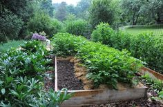 vegetable-garden tuneup: make room for more - A Way To Garden