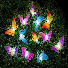 MaiTian Garden Solar Lights Butterfly String Lights Waterproof Fiber Optic Butterfly Shaped 16 LED Multicolor lamp for Garden Lawn Patio Wedding Party Festival Outdoor Decoration (Multicolor) Solar Garden Lamps, Outdoor Garden Lighting, Outdoor Garden Decor, Outdoor Gardens, Solar Lamp, Glow Garden, Solar String Lights, Solar Powered Lights, String Lights Outdoor