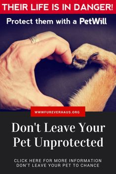Protect Your Pets When You No Longer Can