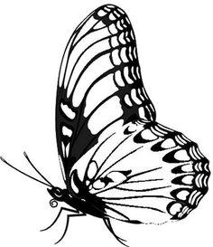 Desenhos para Colorir: borboletas