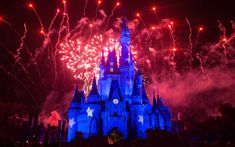 This May Be the Easiest Way to Save Money at Disney World | You can save money at Disney World just by saving your dining receipts.