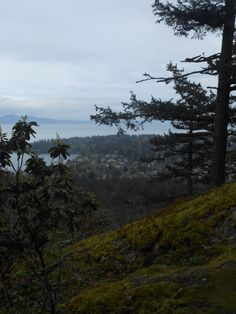 On top of Mount Douglas, Victoria - Vancouver Island, BC. #day10
