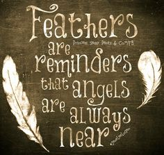BIRDS of a FEATHER: Angels together. When you find a feather say a little prayer of thanks. LLC / brother Phil promised to send feathers for comfort / and so he does / Thank you Angel Protector, Quotes To Live By, Me Quotes, Logan Quotes, Night Quotes, Random Quotes, Prayer Of Thanks, Affirmations, Little Prayer
