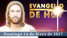 Evangelio de Hoy Domingo 14 de Mayo 2017  el que cree en mí hará obras m...