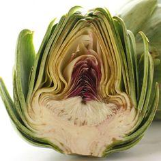 Inside of an artichoke