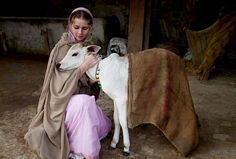 spiritual life means relationship. In India, for Hindus the cow is not eaten and is holy.