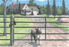 Homestead security for women -Thehomesteadsurvival (A lot of these are good tips for everyone, in general.)