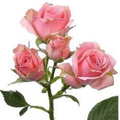 смайлик розы - Поиск в Google