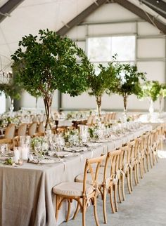 2017 Wedding Trends-Top 30 Greenery Wedding Decoration Ideas gorgeous tall tree wedding centerpieces to impress your guests Summer Wedding Centerpieces, Green Centerpieces, Centerpiece Ideas, Greenery Centerpiece, Green Wedding Decorations, Branch Centerpiece Wedding, Round Table Decor Wedding, Banquet Centerpieces, Long Table Wedding