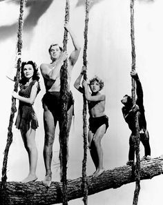 King of the Swingers: Cheetah (right) In the 1939 hit Tarzan Finds a Son. Jane, Tarzan, Boy and Cheetah. The character of Cheetah was the comic relief in the Tarzan series starring American Olympic gold medal swimmer Weissmuller.