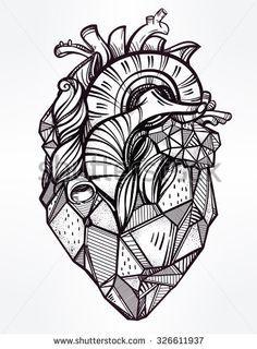 Illustration of Sketched hand drawn line art ornate decorative human heart. vector art, clipart and stock vectors. Cute Tattoos, Beautiful Tattoos, Geometric Heart Tattoo, Tattoo Templates, Frida Art, Heart Illustration, Anatomical Heart, Human Heart, Heart Art