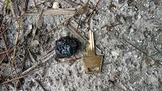 Meteorites found from February 2016 daytime Florida fireball Our Solar System, February 2016, Recovery, Florida, Space, News, The Florida, Floor Space, Wilderness Survival