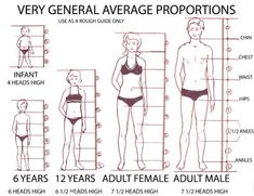 General proportion guide - I presume that these can be tweaked accordingly depending on the individual!