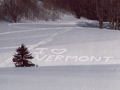 I could so live and be happy in Vermont!