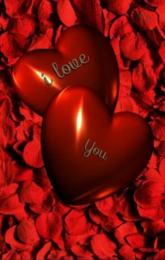 Flower Phone Wallpaper, Heart Wallpaper, Love Wallpaper, Love Messages For Wife, Love Quotes For Girlfriend, Most Beautiful Flowers, Beautiful Love, Love Images, Love Photos