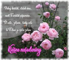 Floral Wreath, Wreaths, Decor, Saints, Candle, Garlands, Dekoration, Santos, Flower Crowns