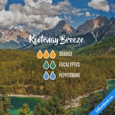 Kootenay Breeze - Essential Oil Diffuser Blend