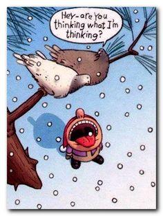 31 Best Winter Jokes Images Funny Cartoons Jokes Laughing