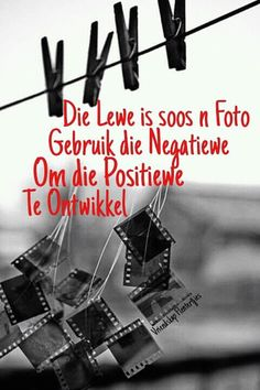 Hang jou drome in die wind Haruki Murakami, Afrikaanse Quotes, More Than Words, Inspirational Thoughts, Cute Quotes, Wise Words, Laughter, Jokes, Positivity