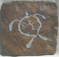 Sea turtle. This petroglyph turtle is carved into the lava rock near Puako, Hawaii.