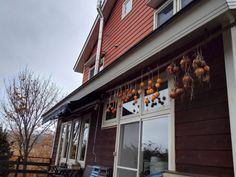 drying persimmons the japanese way