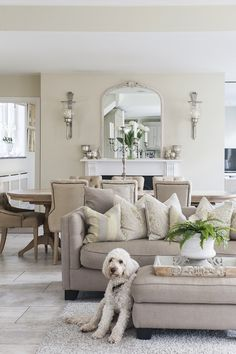 Lovely Molly, coincidentally a perfect match #interiors #WTinteriors