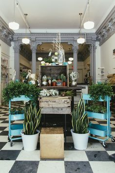 Urban Outfitters - Blog - UO Guide: Halifax