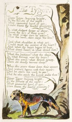 The Tyger Poem by William Blake is one of the most famous and inspirational poem at present. William Blake was an English poet. The Tyger William Blake, William Blake Poems, William Blake Tiger, Songs Of Innocence, Terra Nova, Shady Tree, Grain Of Sand, Tears Of Joy, Writing Poetry