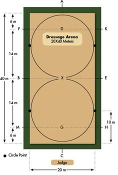 The Benefits of a Small Dressage Arena. Can the soundness of your dressage horse be related to the size of your arena?